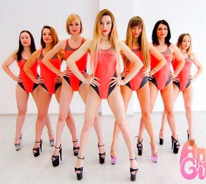 Команда профессионалов POLE DANCE в Москве. Фото к статье №1